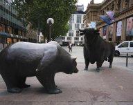Býk a medvěd
